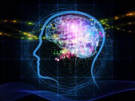 Darmflora heeft invloed op de hersens