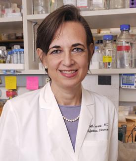 dr. Beth Levine van de universiteit van Texas